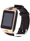 Умные часы Smarterra Chronos X (розовое золото)